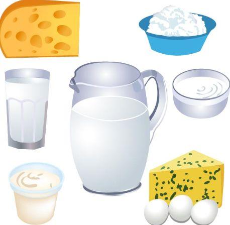 乳酸菌が多い食品や乳酸菌飲料や発酵食品はどんなものがあるの?