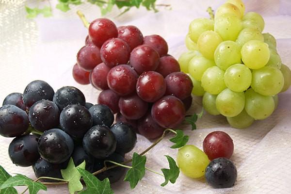 ポリフェノールの効果効能と種類のまとめ!食品は何があるの?