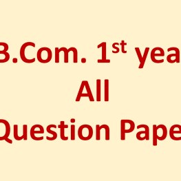 BCom 1st Year Question Paper