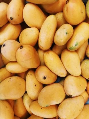 ripened mangoes