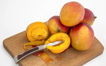 Why do ripened mangoes have a strong smell?