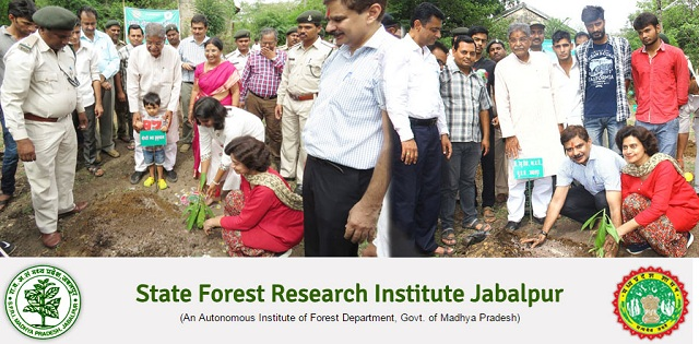 MP State Forest Research Institute Recruitment for Senior Research Fellow (SRF) and Field Assistant Post| Offline Application