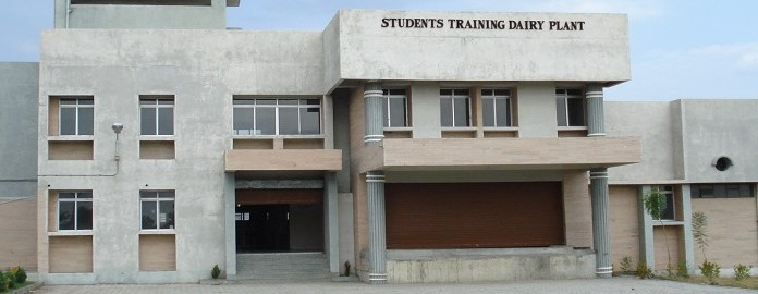 College Of Dairy Technology Warud Recruitment 2019-2020