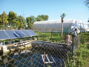 Solar Pumping Programme for Irrigation and Drinking Water - PDF, Benefits