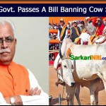 Haryana Govt. Passes A Bill Banning Cow Slaughter