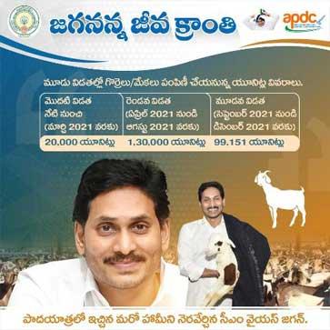 sheep-goat-units-in-the-AP-Jagananna-Jeeva-Kranti-Scheme