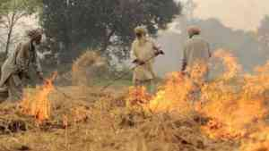 Haryana Parali Incentive Scheme – Rs. 100 per Quintal to Farmers for Not Burning Stubble