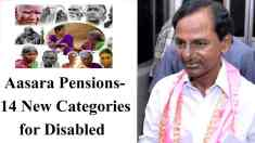 Telangana Aasara Pension Scheme Category List (21) of Persons With Disabilities