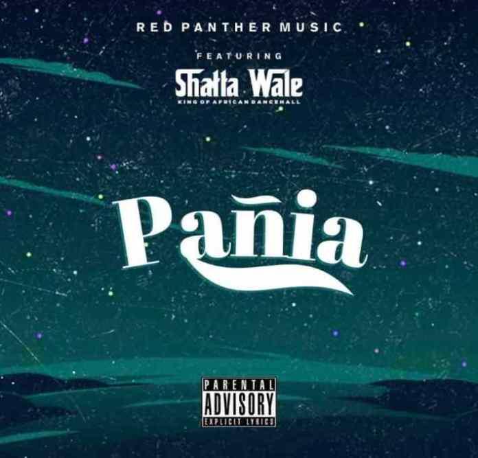 Shatta Wale - Panai [Official Video]