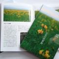 【案内】「サロベツ・ベニヤ天北の花原野」発売のお知らせ