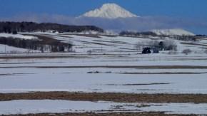 牧草地の雪解け
