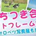 【案内】おもちつき会&フォトフレーム作り!