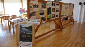 「サロベツ湿原渡り鳥保全プロジェクト」活動報告展を開催中です