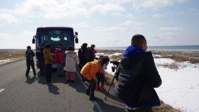 【報告】「早春の海岸線で生き物観察ツアー」を開催しました