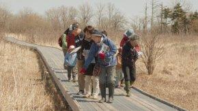 【報告】4/28オバパワークラブさんによる木道観察会が開催されました!!