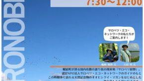 10/6(日) 秋のサロベツ原野渡り鳥観察ツアー in幌延町