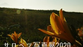 サロベツ写真展(職員写真展)を開催中です!4/9~5/2 於:湿原センター