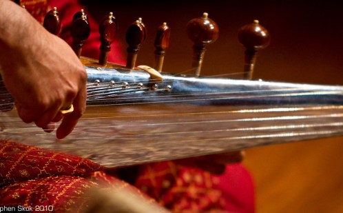 Sarod close up