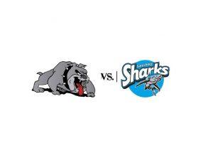 bulldogs-vs-sharks