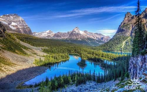 Красивые фото-картинки природа обои для фона рабочего ...
