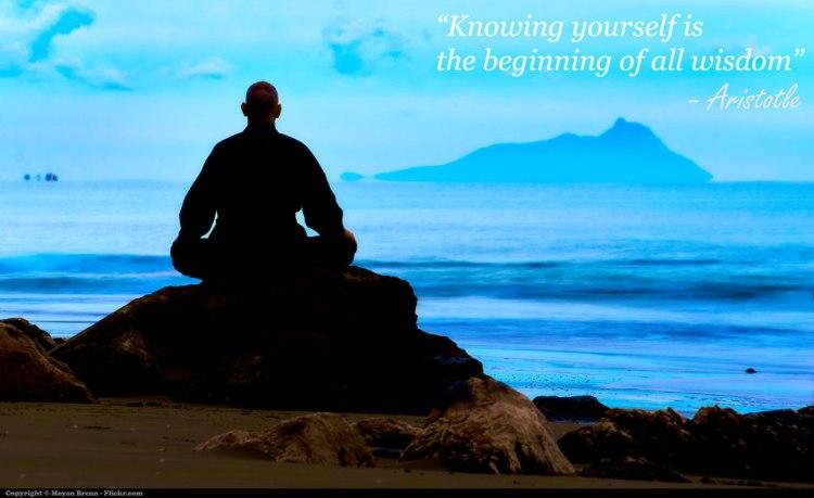 Wisdom by Moyan Brenn