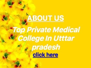 Top Private Medical College In India