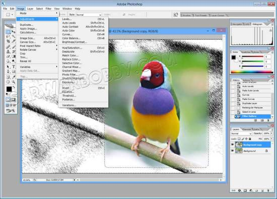 Adobe-photoshop-7.0-100%-Works-free-download