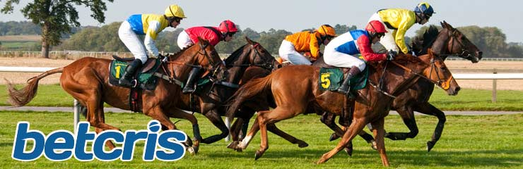 Horse Racing Betting - Triple Crown Betting Lines and Odds
