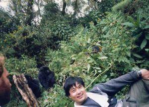 gorilla-deai01