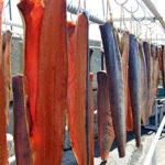 鮭(シャケ)の醤油味醂干し~笹川流れ