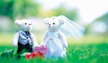 結婚・入籍に関しての、占い鑑定の活用の仕方(1)