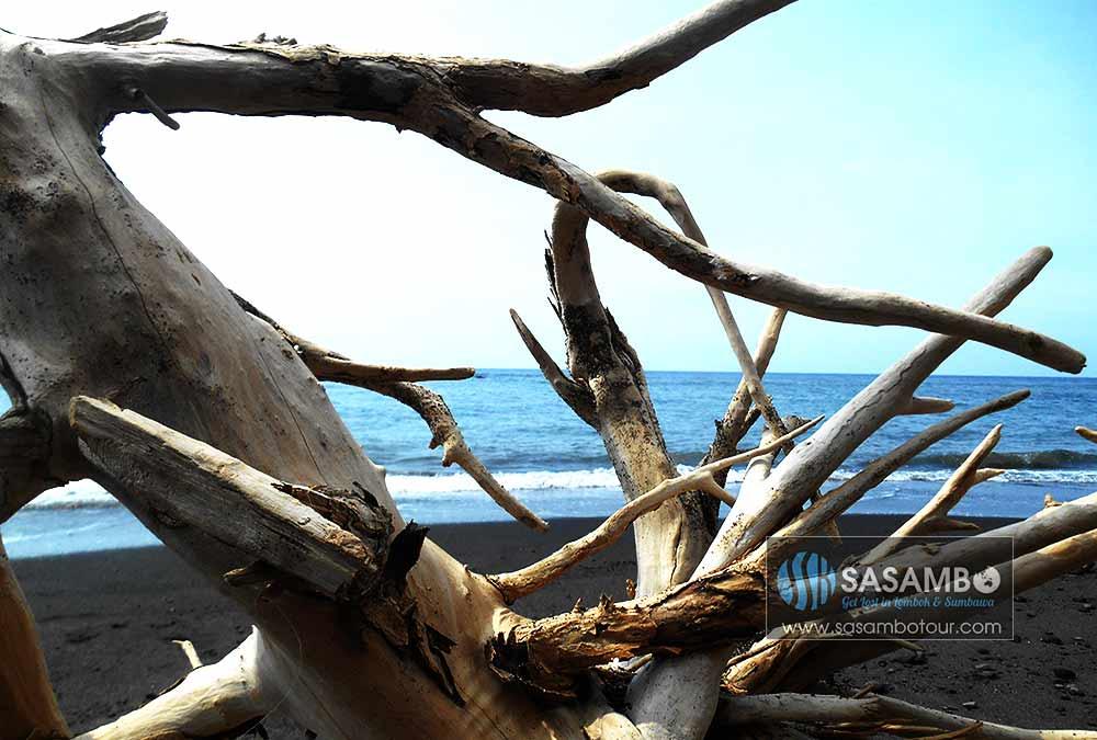 Pantai-Tebing-kayu