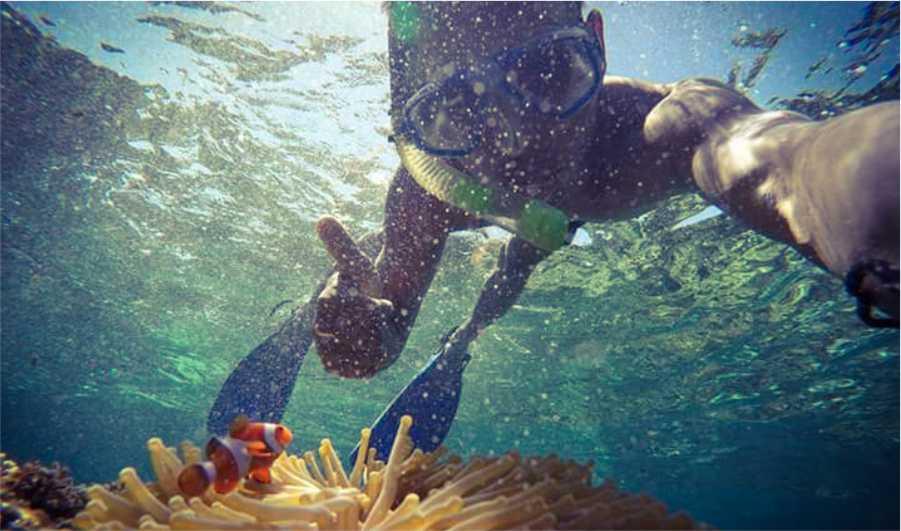 paket wisata lombok sumbawa snorkling di gili nanggu