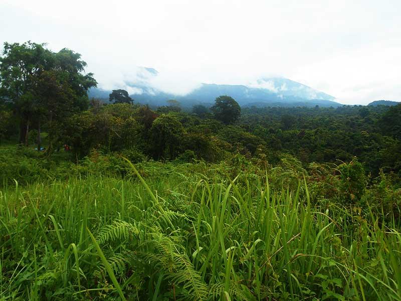 tete-batu-lombok-timur-camping10