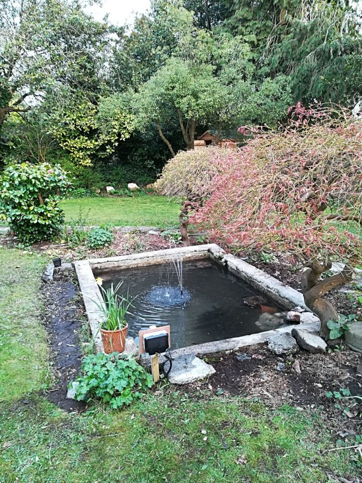 Concrete garden ponds with pond lilies, pump and filter