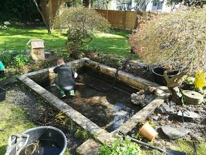 Pond Cleaning Service leaking pond repair