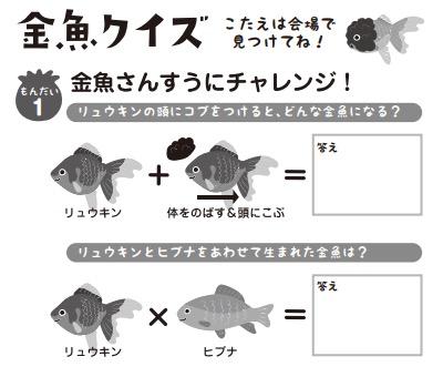 金魚クイズ