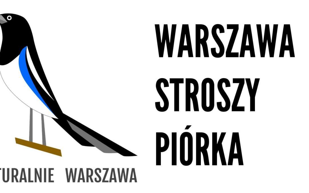 2018-04-23: spacerem do pracy przez Pragę