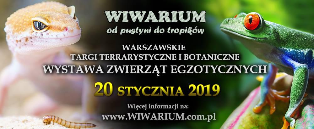 2019-01-20: Wiwarium – warszawskie targi egzotyczne