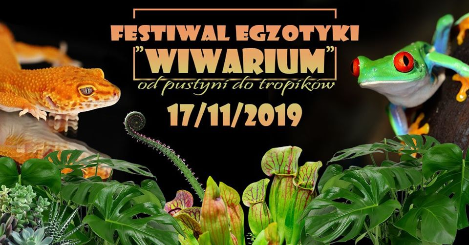 """2019-11-17: Festiwal Egzotyki """"Wiwarium od pustyni do tropików"""""""