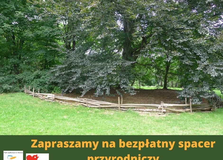 2021-08-13: bezpłatny spacer przyrodniczy w Parku Skaryszewskim