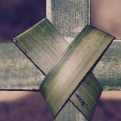Homily from Apr. 9, 2017: Palm Sunday