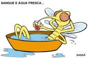 11/03/2001 - Dengue se instala em londrina.