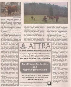 Sassafras Valley Ranch - South Poll Cattle | Featured in Small Farm Today