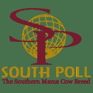Sassafras Valley Ranch | South Poll Grass Cattle Association