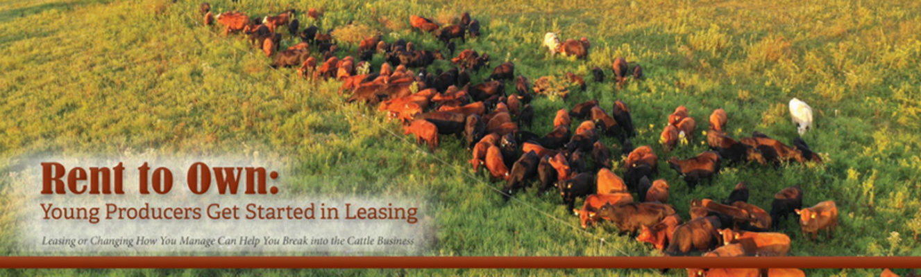Sassafras Valley Ranch ~ Featured in the February 2021 Issue of Missouri Beef Cattleman