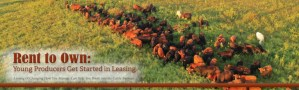 Sassafras Valley Ranch Featured in Missouri Beef Cattleman