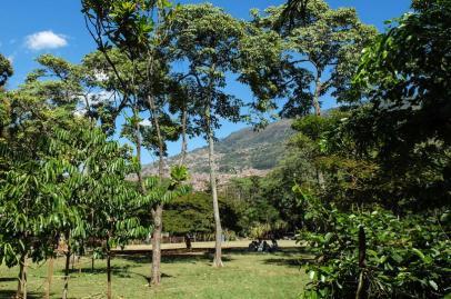 The Botanical Garden of Medellín