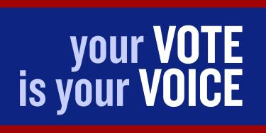 Why I'm Voting – Despite Our Options your vote is your voice