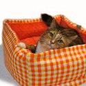 Shopify-Plaid-1-Md-Pet-Bed